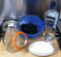 The ingredients and accessories for making Damson Gin