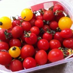 A punnet of tomatoes
