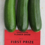 Three courgettes that have won first prize in a show