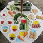 Vegetables entered into a show
