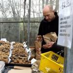 People examining potatoes