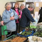 Visitors browsing produce at Seedy Saturday 2011